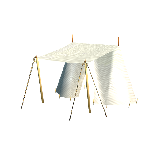 p3d in - wedge tent